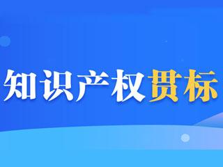 河南知识产权贯标奖励政策